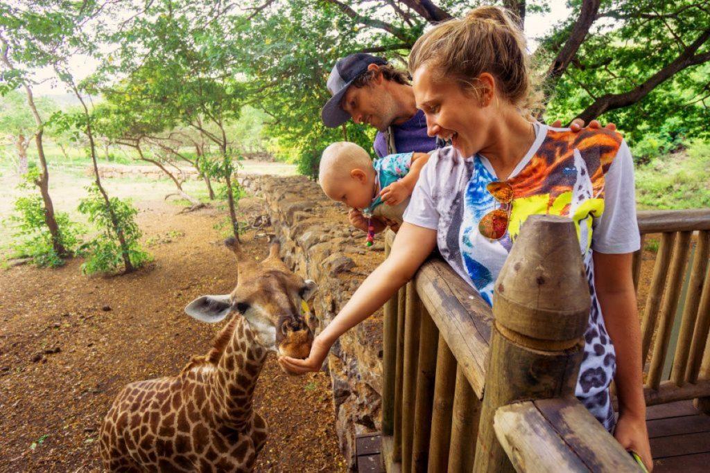 zoo-40 idées irrésistibles de premier rendez-vous - 40 et plus