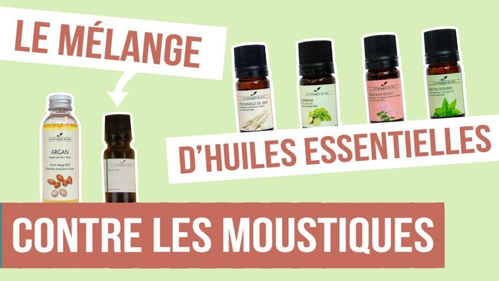 moustique-huiles-essentielles-repulsifs-40-et-plus-3